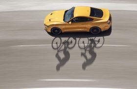 Ford spodbuja voznike in kolesarje k strpni 'souporabi cest'